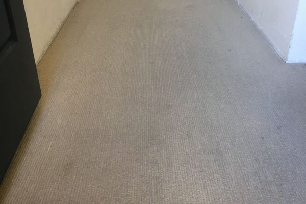 carpet-aftre-2